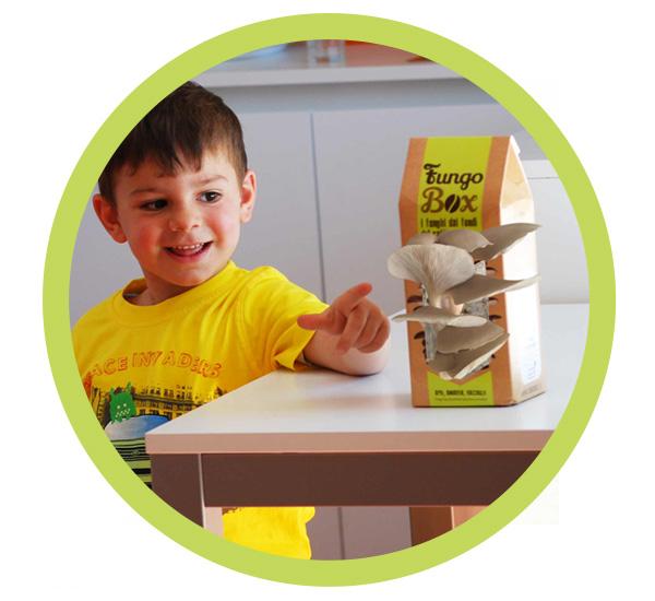 Fungo Box regalo per bambini