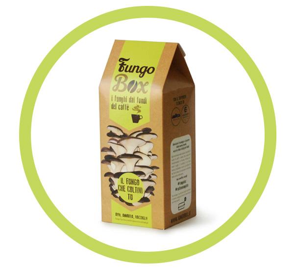 Fungo Box kit funghi fai da te