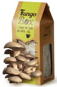 Fungo Box I funghi che coltivi tu